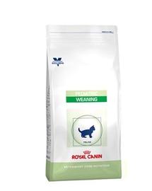 ROYAL CANIN Cat Pediatric Weaning 400g