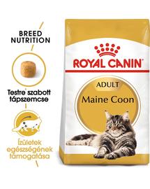 ROYAL CANIN MAINE COON ADULT - Maine Coon felnőtt macska száraz táp 10 kg