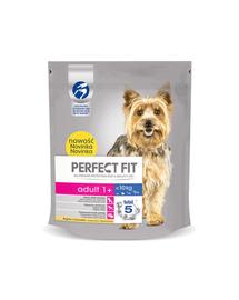 PERFECT FIT Adult (1 év) csérkébe gazdag eledel kisméretű kutyáknak 5 x 825g