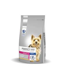 PERFECT FIT Adult (1+év) csérkébe gazdag eledel kisméretű kutyáknak 6 kg