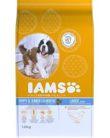 IAMS ProActive Health Puppy - Junior Large Breed Chicken 3 kg