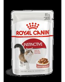 ROYAL CANIN INSTINCTIVE GRAVY - felnőtt macska szószos nedves táp 85g x12