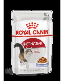 ROYAL CANIN INSTINCTIVE JELLY - felnőtt macska zselés nedves táp 85g x 12