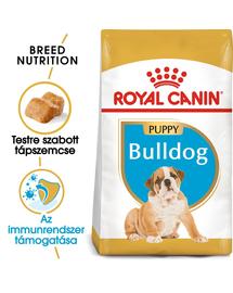 ROYAL CANIN FRENCH BULLDOG JUNIOR - Francia Bulldog kölyök kutya száraz táp 10 kg