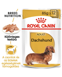 ROYAL CANIN DACHSHUND ADULT - Tacskó felnőtt kutya nedves táp 85g x 12