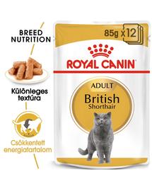 ROYAL CANIN BRITISH SHORTHAIR ADULT - Brit rövidszörű felnőtt macska nedves táp 85g x12
