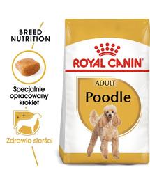 ROYAL CANIN POODLE ADULT - Uszkár felnőtt kutya száraz táp 0,5 kg