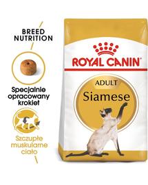 ROYAL CANIN SIAMESE ADULT - Sziámi felnőtt macska száraz táp 10 kg