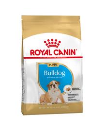 ROYAL CANIN BULLDOG JUNIOR - Angol Bulldog kölyök kutya száraz táp 12 kg