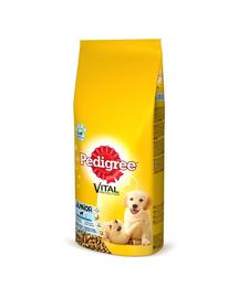 PEDIGREE Vital Protecion Junior közepes méretű kutyáknak csirke 15 kg x 2